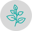 Herb Icon